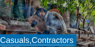 Casuals, contractors or labor hire workers which is better