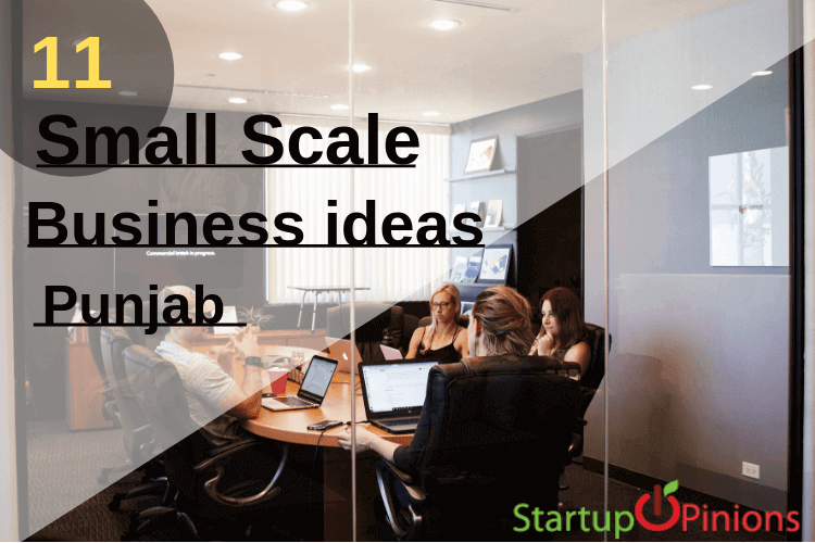 Top 11 small scale business ideas in Punjab - Startupopinions