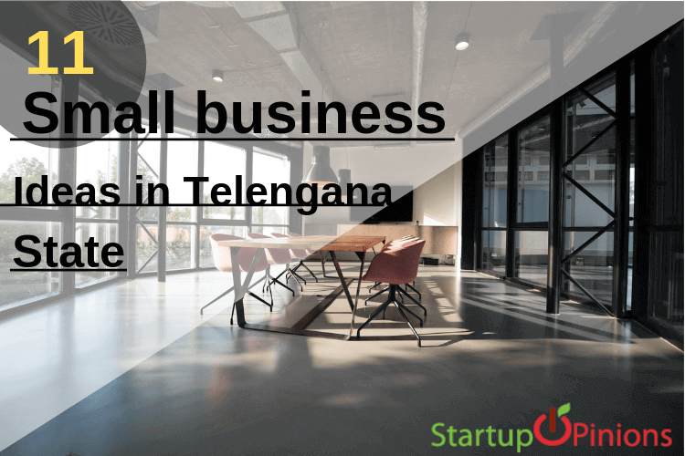business ideas in telangana