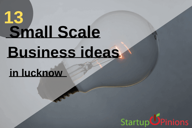 Top 13 Small Scale Business Ideas in lucknow - Startupopinions