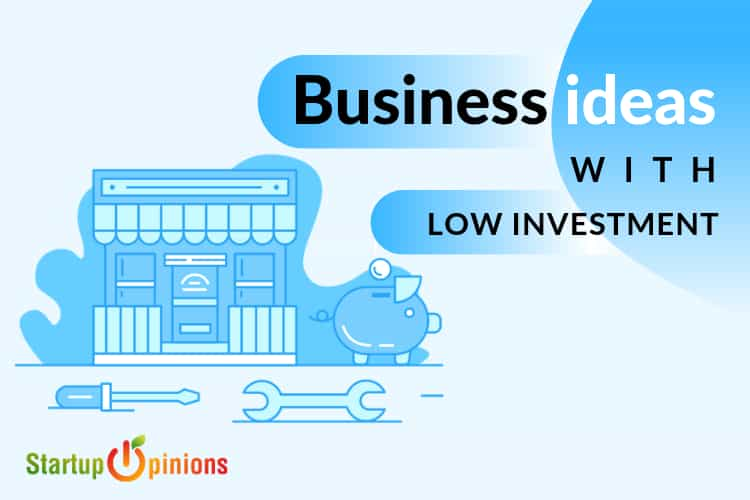 business ideas with low investment