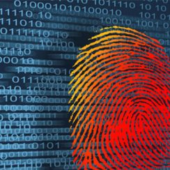 Trust and Safety for the Online Identity Verification